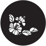 GONG 22716 HIBISCUS FRAME