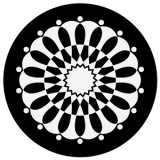 GONG a1013-bw