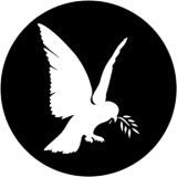 78089