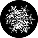 77771 Snowflake Jules Fisher