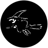 77555 (DHA# 555) Black Witch
