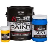 Wildfire Visible Luminescent Paint(可視ペイント)
